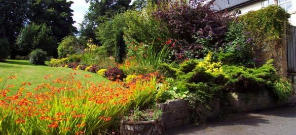 Garden05Med